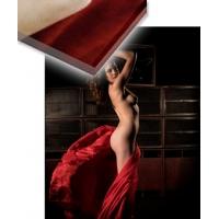 "2016/06 Acrylglas 30 x 40cm - Scene ""Lautsprecherwand"""
